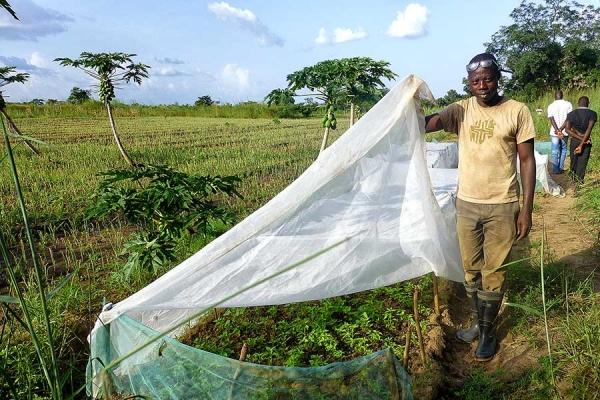 gesundheit-14-landwirtschaftsprojekt300157A2-9603-84F3-5326-9E56B5D64846.jpg