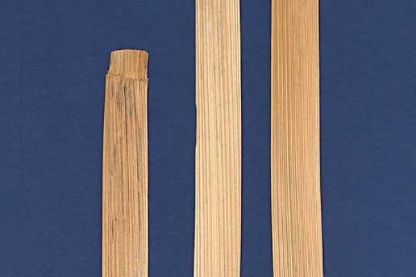 richter-08-didgeridoo48921450-463B-FBF9-8673-6F9CDFDC96C4.jpg