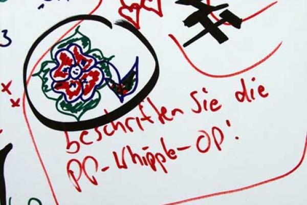 visitors-graffiti-17F6FA9F33-B7DB-2B38-765D-80BD98D774FC.jpg