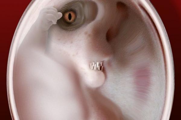 roland-mettel-extraterrestrial-embryonic449CFC42-46ED-0088-8590-54C7FBCDB00C.jpg